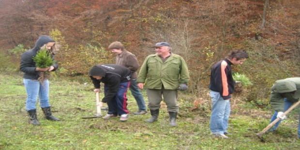 Sredstva za projekte iz oblasti šumarstva