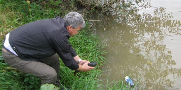 Poribljavanje rijeke Bosne