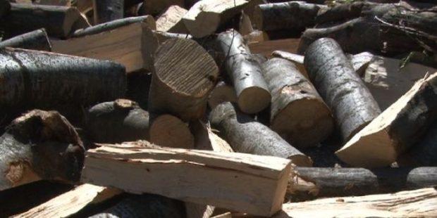 Zenička Šumarija već rasprodala drva za ogrjev