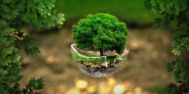 Fond za zaštitu okoliša FBiH finansira eko projekte sa 7,08 mil KM